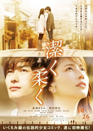 image of drama Beyond The Memories (2013) [JDRAMA]